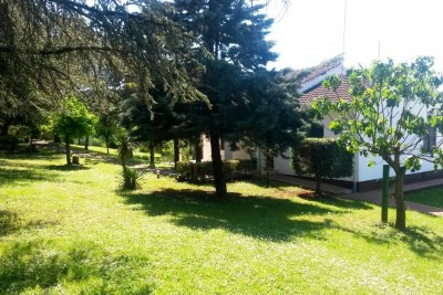 Villa with pool and large garden, Motovun, Istria 5