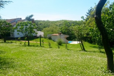 Villa with pool and large garden, Motovun, Istria 3